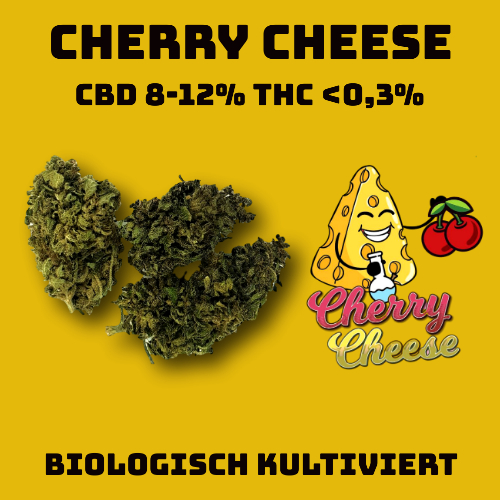 CBD Blüten Cherry Cheese